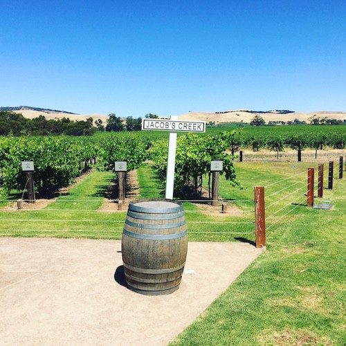 Three Fantastic Wine Regions in South Australia