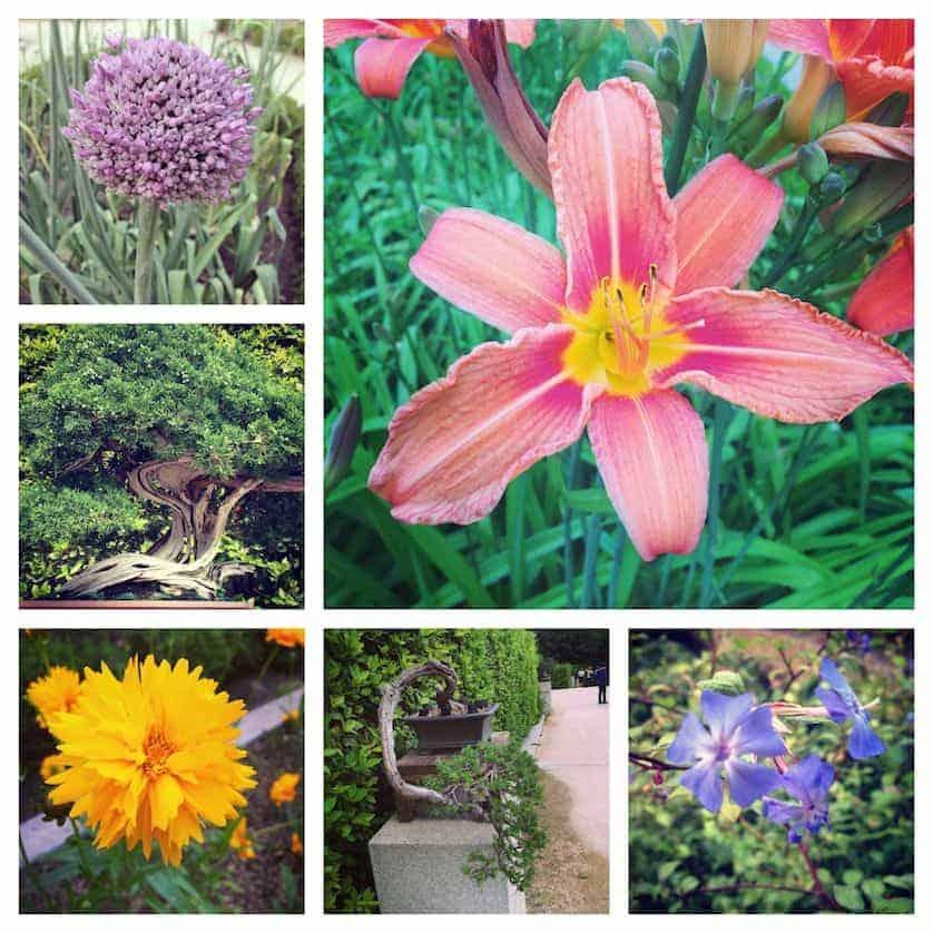 Botanical Gardens - Lux Madrid City Break