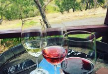 McLaren Vale Wine Tasting by WorldWideWill