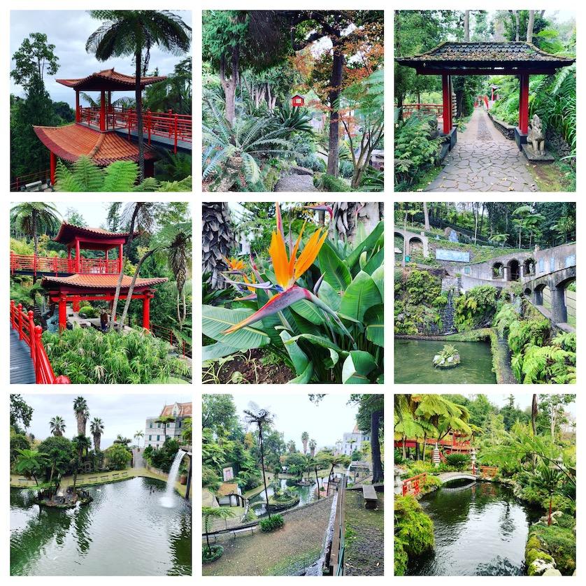 Monte Palace Gardens Madeira